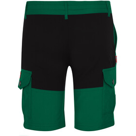TROLLKIDS Hammerfest Short Enfant, dark green